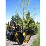 Навесной пересадчик деревьев Lemar 1034 4it